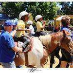 EARTH Centre NPC - Free therapeutic horse riding & other interactive equine therapies for physically and mentally challenged children & young adults that cannot afford