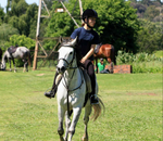 Ranger Stables - Horse riding lessons, Pony rental for Birthday Parties / Functions, holiday camps and weekday / weekend outrides.