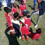 Sport - Future Stars Soccer Camp