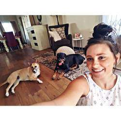 StudentCo Pet sitting services - Pet sitters, house sitters, holiday pet care, dog walking in all major areas of Gauteng