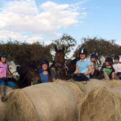 Sun Valley Stables - Teaching children to ride in a safe and fun-filled environment with pony camps, shows and fun days held regularly.