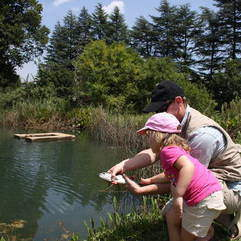 Sport - Holiday fly fishing lessons at Kloofzicht