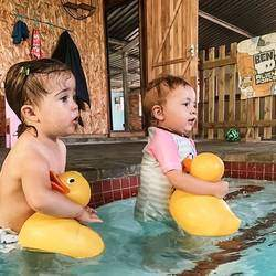 Swim Safe Academy - Swimming lessons, swim school for toddlers, kids and adults all year round in a heated pool.