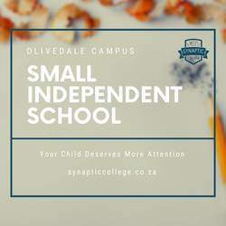 Synaptic College - Mainstream alternative education facility specialising in array of subjects for Gr 8 to 12 learners, home school enviroment based in Olivedale.