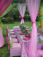 The Party Pros - Full party services for all ages- decor, candy tables, party packs, catering, face painting, crafts, discos, tiedying, amazing race, and many more