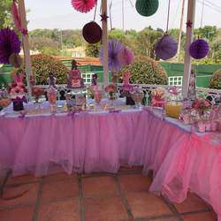 The Children's Party Company - Party Planners for Children's Parties & Functions, party hire A to Z party planning services available