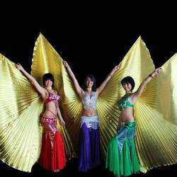 Triple Fusion Dancers - Disco/RockStar/HipHop parties,RocknRoll,Bollywood,Hula,Fire,Latin,CanCan,bellydance for events/functions/parties