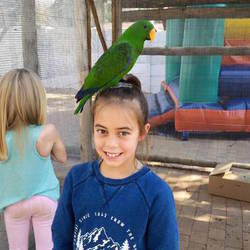 256 on Smit - /wonderful day trip venue for families and kidsParty venue, art parties, animal show and tell parties, pamper parties, kids parties, themed parties