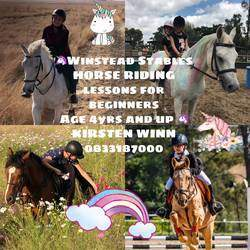 Winstead Stables Springs - Horse Riding lessons for all ages and levels. Paddock party (full kiddies birthday party service , venue, pony rides, jumping castle, jungle gym )