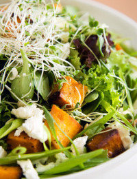 Roast butternut salad recipe