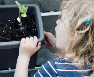 Gardening fun for kids at the Autumn Garden Show!