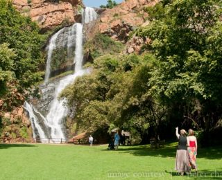 SA's Botanical Gardens open for exercise under Covid-19 lockdown rules
