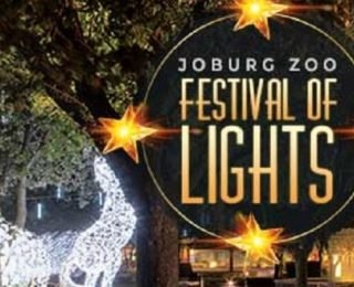 The Festival of lights at Joburg Zoo promises awesome family entertainment.